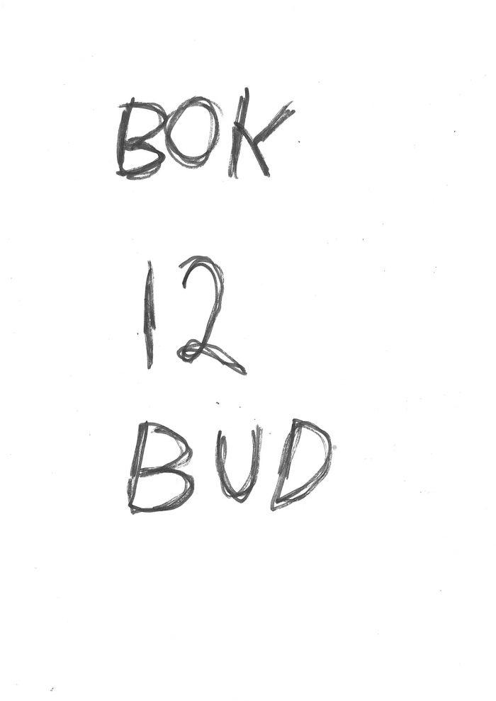 "Trond Worrens bok ""12 Bud"""